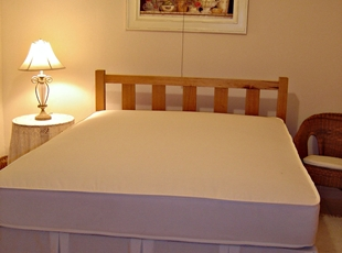 Mattress and  Pleated Valance.JPG
